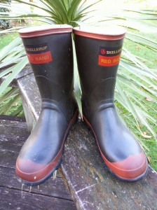 They make bloody good gum boots (multi-purpose - inside joke (-; )